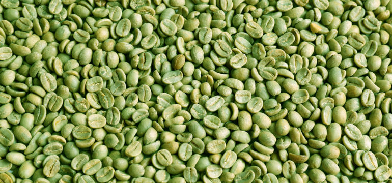 Green _coffee _beans