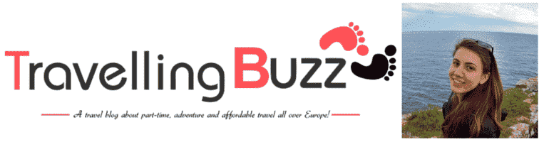 Travelling _buzz